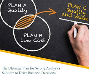 The Ultimate Plan for Strong Analytics Support to Drive Business Decisions : A no-compromise solution on quality and value